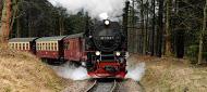 Ferienwohnungen und Ferienhäuser im Harz