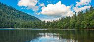 Ferienunterkünfte für den Urlaub im Schwarzwald