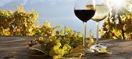 Ferienwohnungen und Ferienhäuser für den Weinurlaub in Deutschland